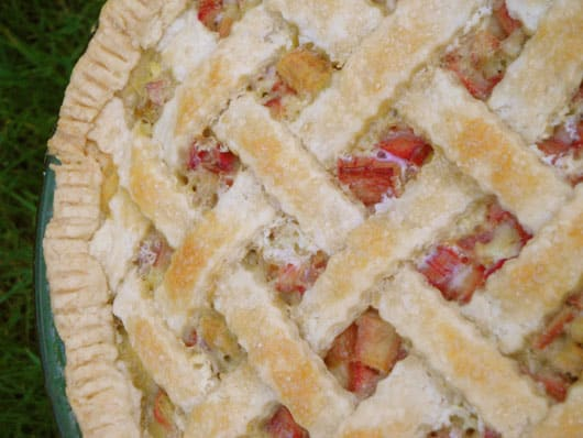 a whole rhubarb custard pie