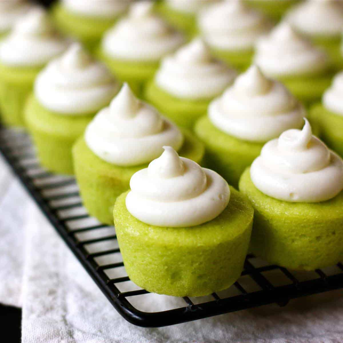 mini lime cupcakes with cream cheese frosting