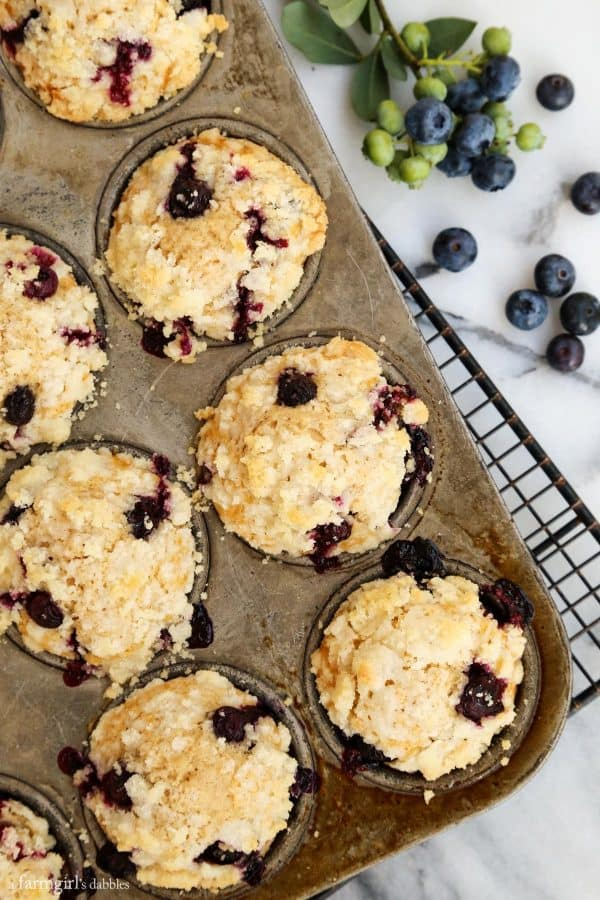 Blueberry Muffins with Crumble Topping from afarmgirlsdabbles.com