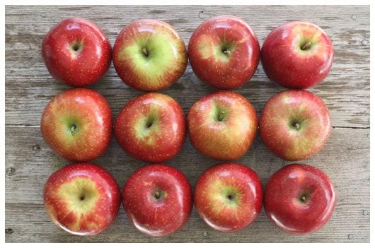Sauteed Apples • a farmgirl's dabbles