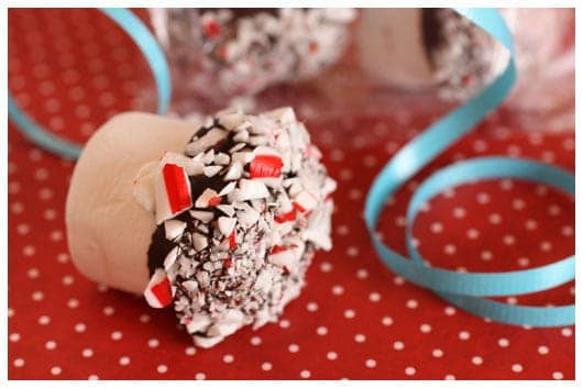 chocolate and candy cane dipped marshmallows