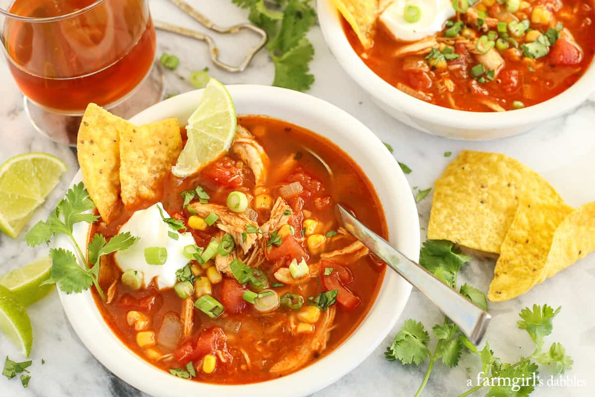 Chicken Tortilla Soup from @afarmgirlsdabbles.com