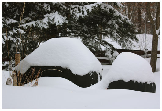 two grills covered in snow
