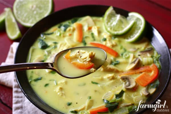 Coconut Curry Chicken Soup • a farmgirl's dabbles