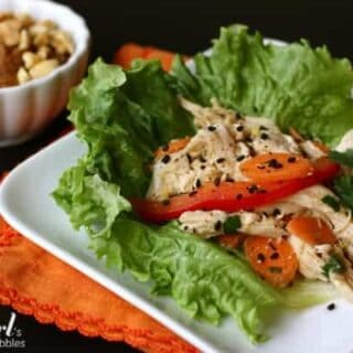 A white square plate of Asian chicken salad on a bed of lettuce with sliced tomatoes and carrots