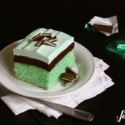 600afd_X_IMG_4517_grasshopper cake