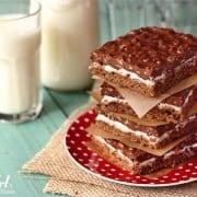 double chocolate crispy bars