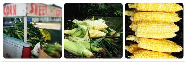 farmer's market corn stand