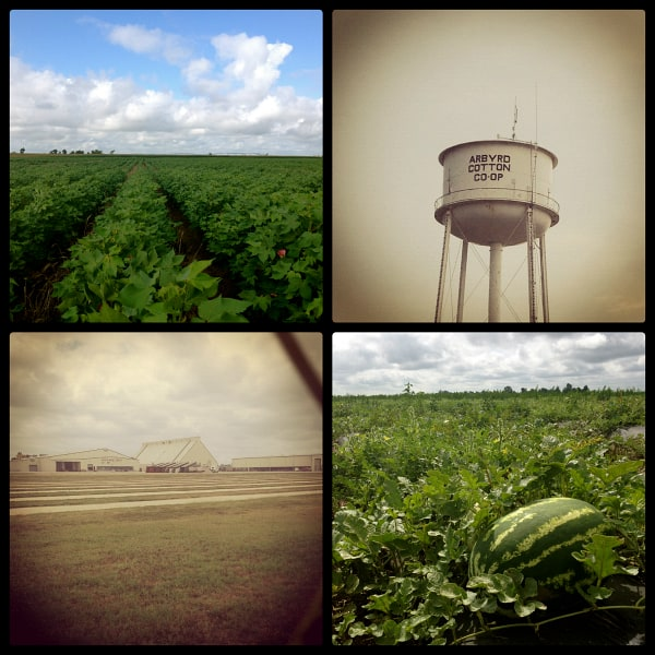 a collage of photos from arbyrd, missouri