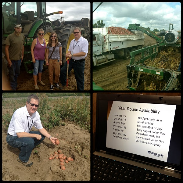 Black Gold potato farms