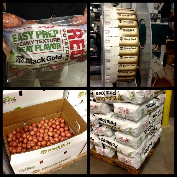 packaging black gold potatoes