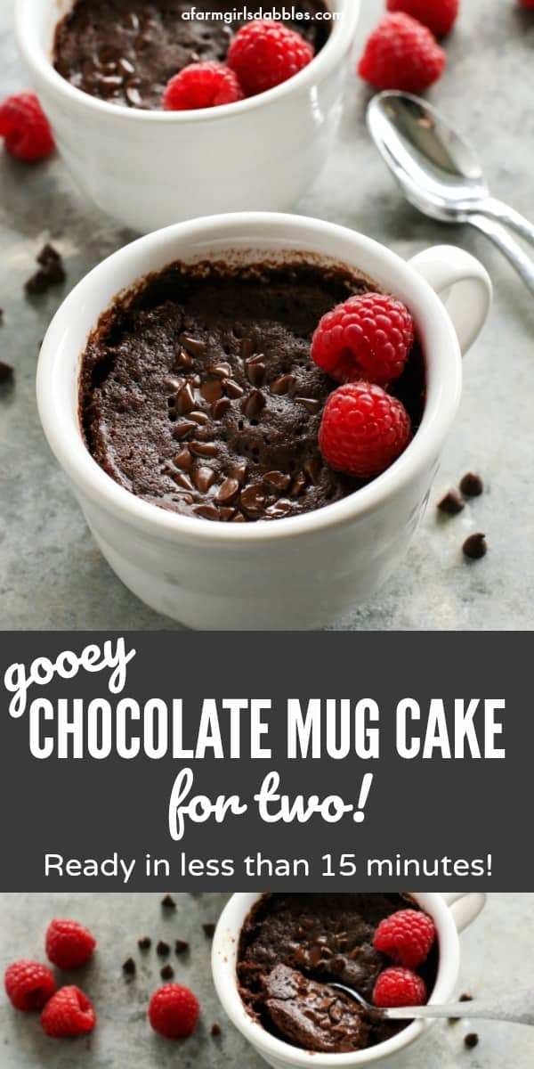Gooey Chocolate Mug Cake for Two from afarmgirlsdabbles.com - This mug cake is incredibly easy to make, with butter and no eggs. In less than 15 minutes, you'll have two crazy delicious servings of warm chocolate cake, ready to eat! #mug #cake #chocolate #cup #microwave #easy