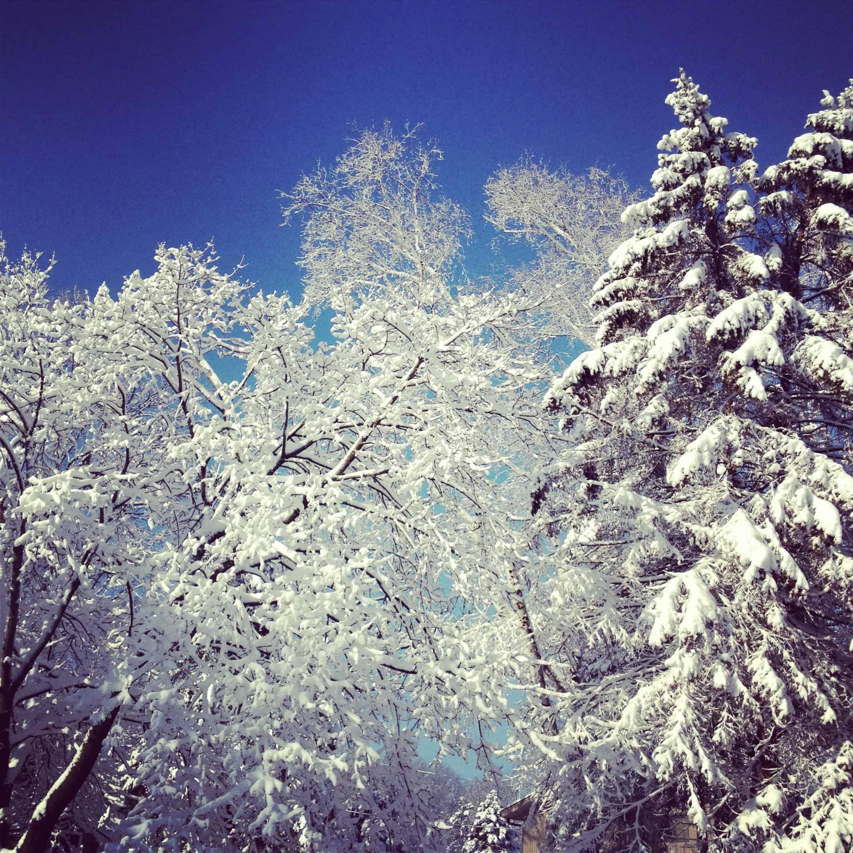 April 23 snow