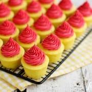 mini Lemon cupcakes topped with Fresh Raspberry Buttercream