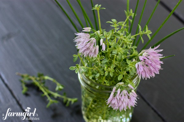 thyme and chives - a farmgirl's dabbles
