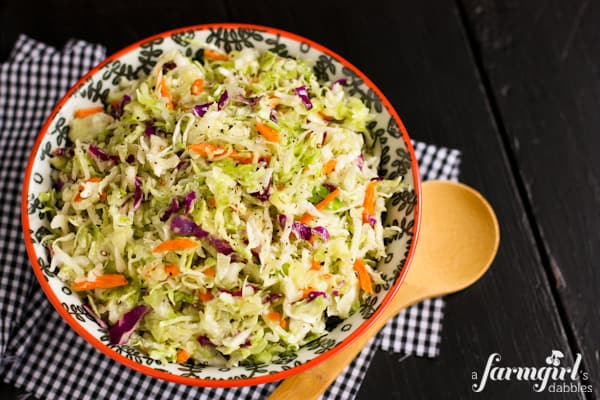 Mom's Sweet Onion Coleslaw Dressing - www.afarmgirlsdabbles.com
