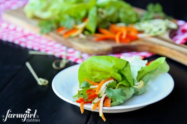 Crunchy Southwest Ranch Lettuce Wraps - www.afarmgirlsdabbles.com