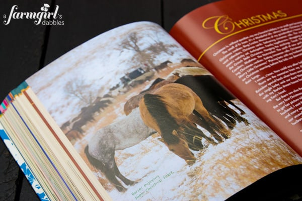 a picture of horses in a cookbook