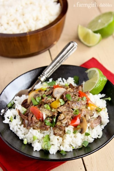 Slow Cooker Coconut Curry Beef - www.afarmgirlsdabbles.com