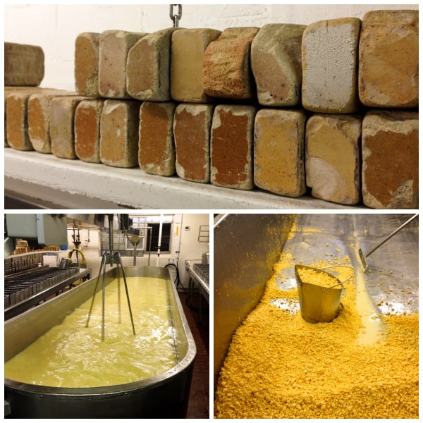 collage of photos showing the cheese making process