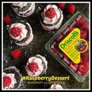 #RaspberryDessert