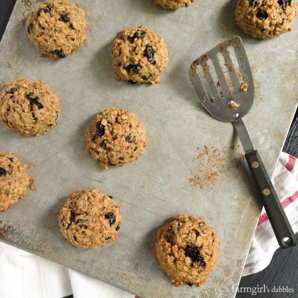 Banana Peanut Butter Breakfast Cookies with Whole Wheat, Oats, and Dried Blueberries