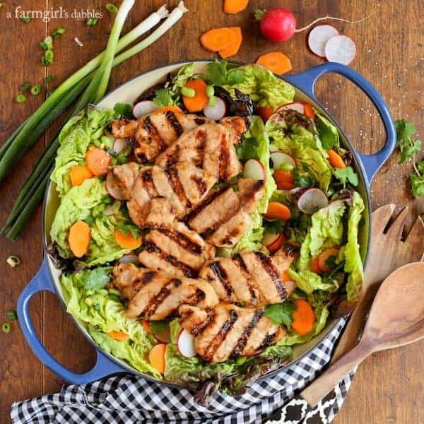 Grilled Asian Pork Tenderloin Salad with Honey-Ginger Vinaigrette from afarmgirlsdabbles.com