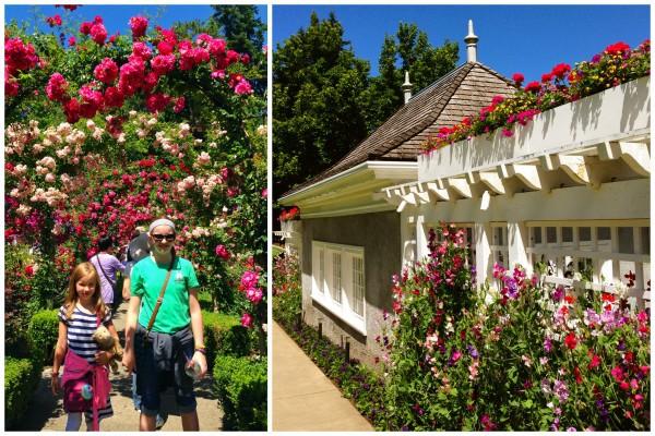 Butchart Gardens at Victoria, BC - afarmgirlsdabbles.com #afdtravel