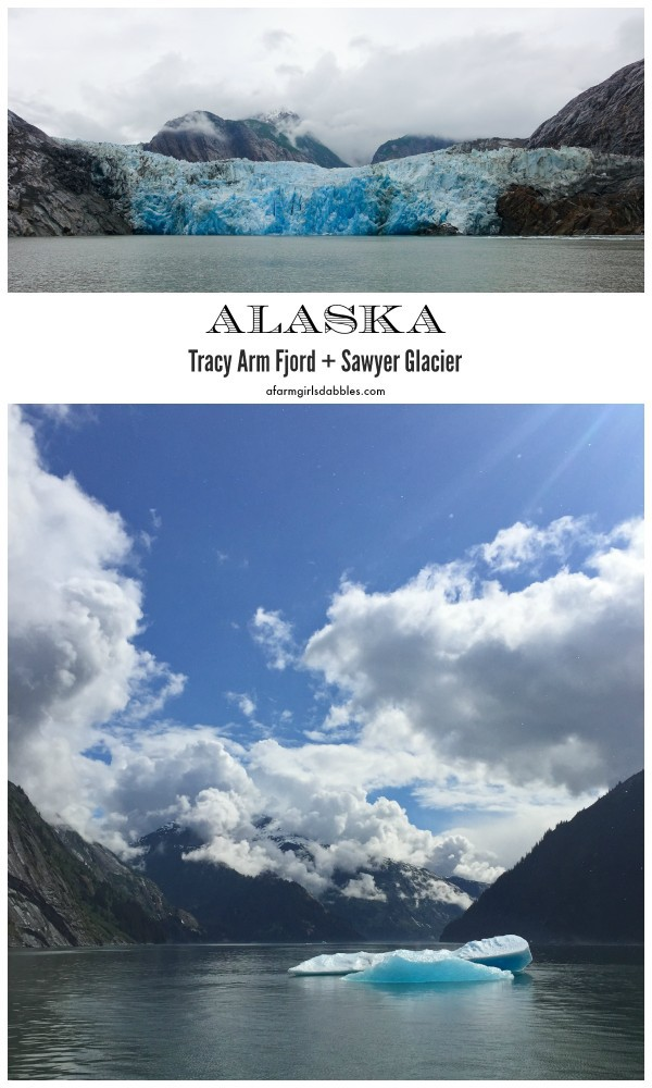 pinterest image of Tracy Arm Fjord + Sawyer Glacier