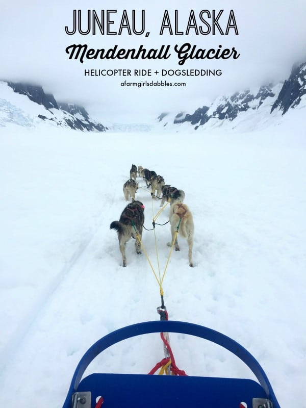 Juneau, Alaska + Mendenhall Glacier from afarmgirlsdabbles.com