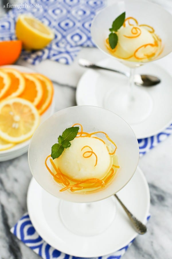 a frosted martini glass of Lemon Sorbet with Candied Orange Peels on top
