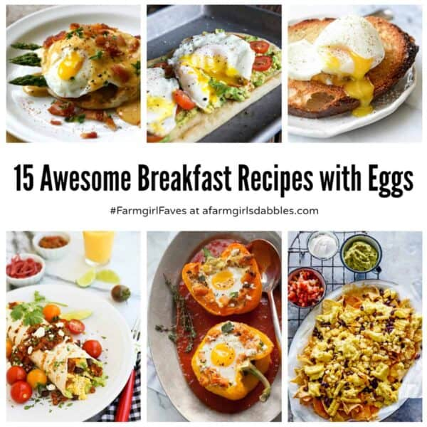 15 Awesome Breakfast Recipes with Eggs from afarmgirlsdabbles.com