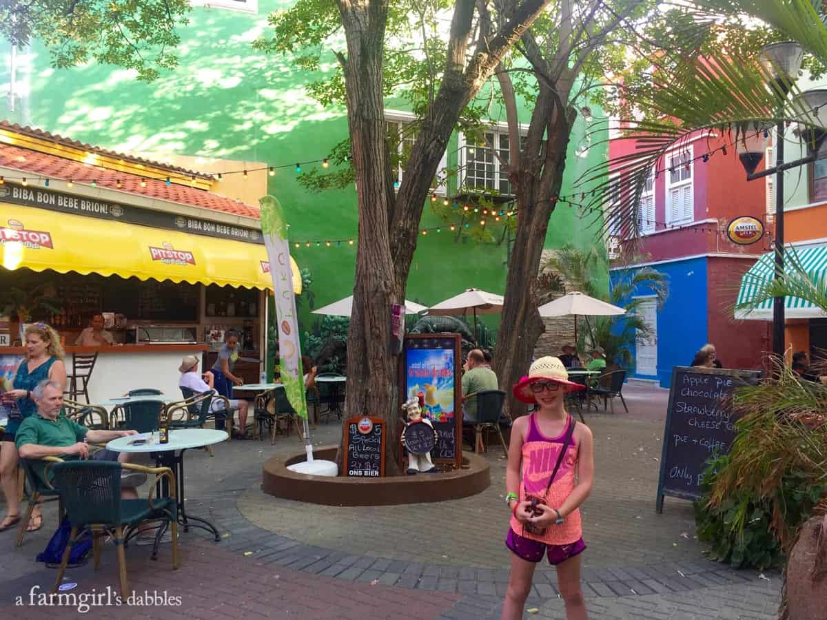 Visiting the island of Curaçao with Carnival Cruise Line's Southern Caribbean Cruise - from afarmgirlsdabbles.com