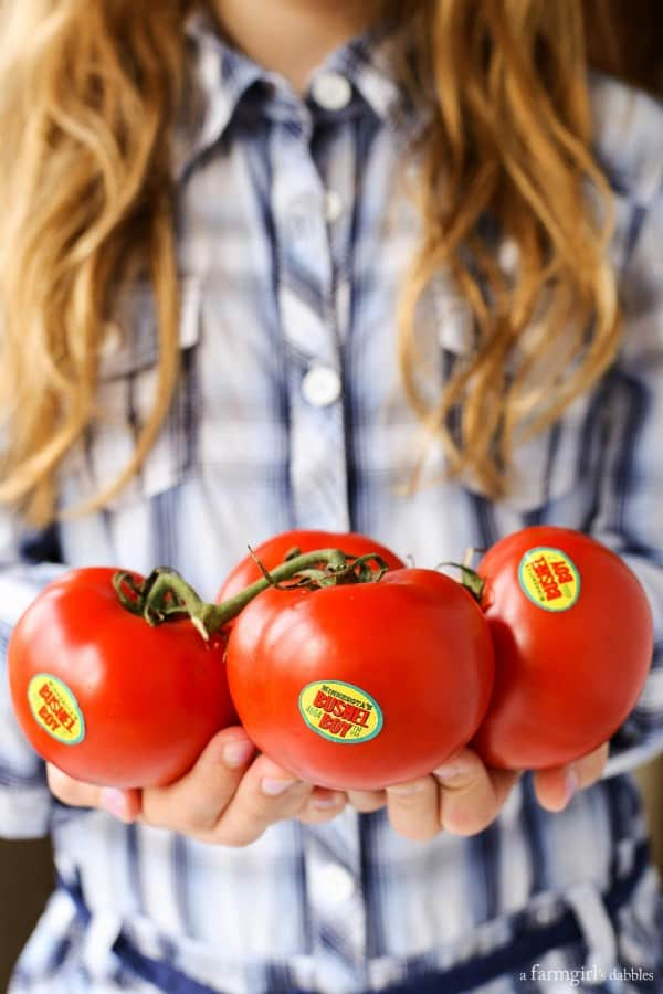 Bushel Boy Tomatoes from afarmgirlsdabbles.com