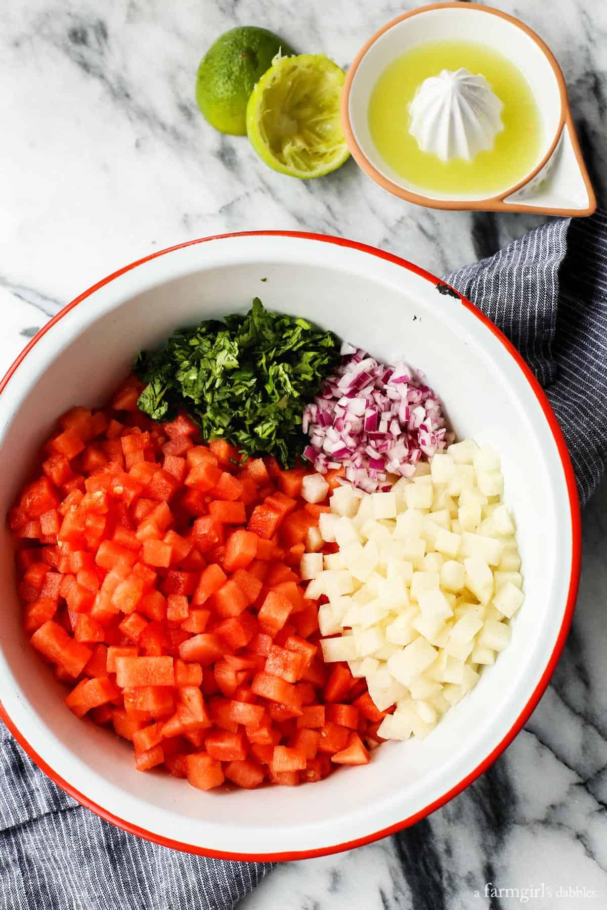 Watermelon Jicama Salsa from afarmgirlsdabbles.com