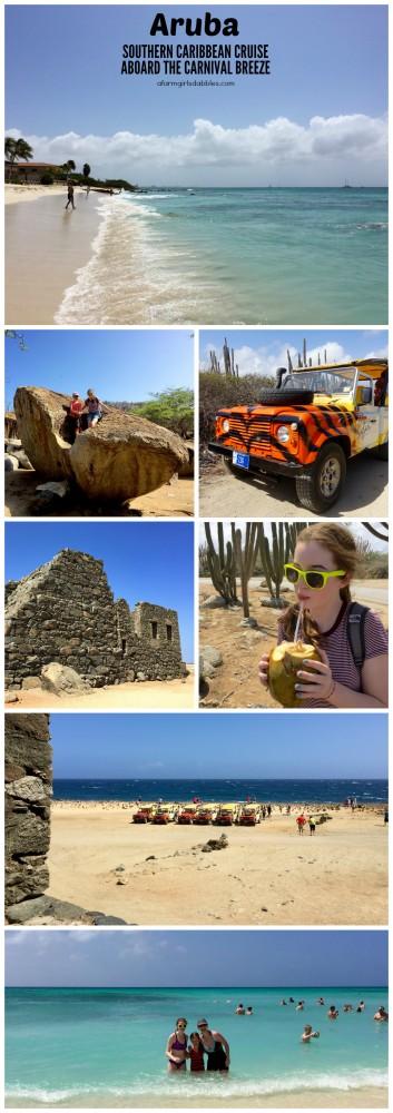 pinterest image of Aruba Island Tour