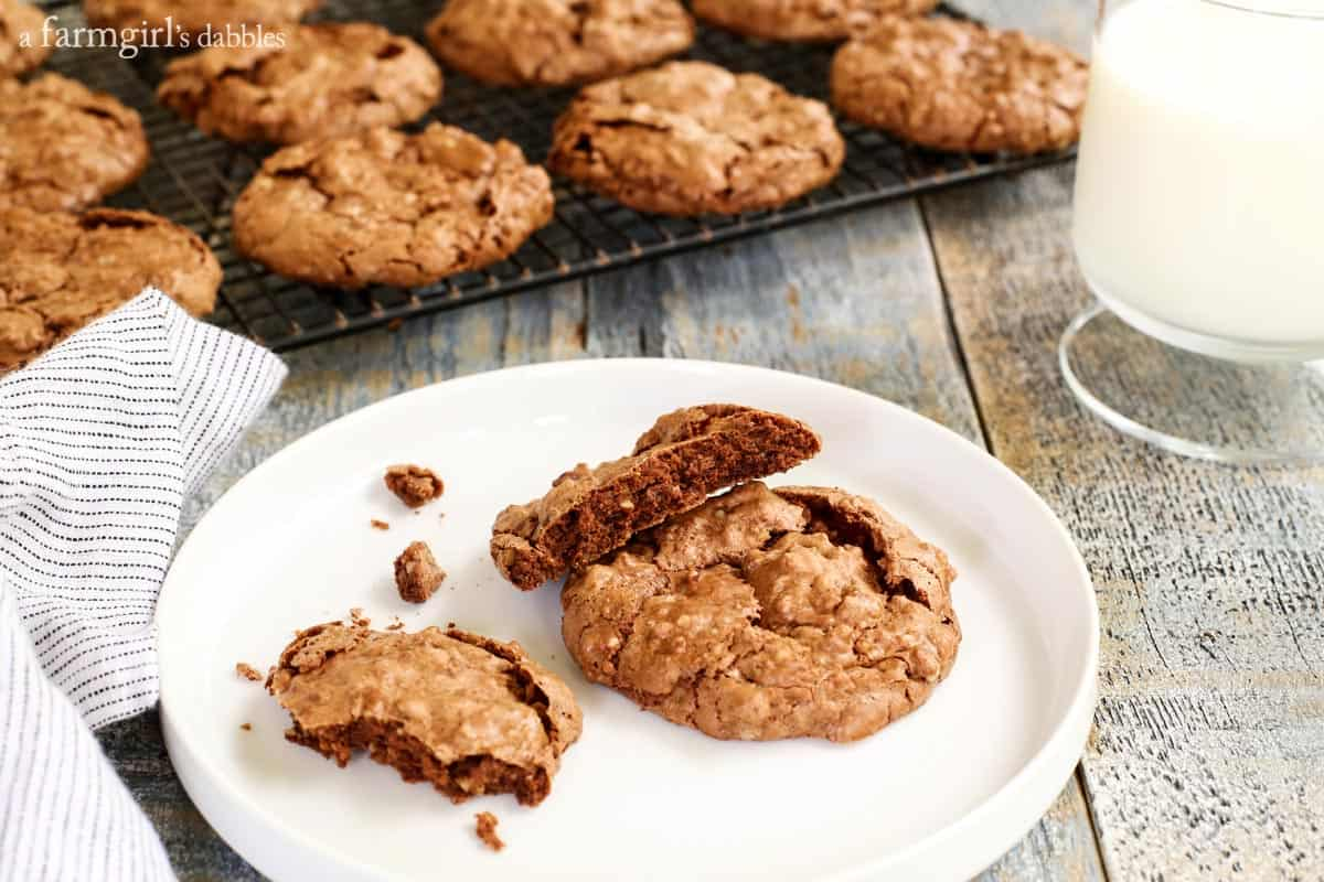 Fudgy Chocolate Meringue Cookies from afarmgirlsdabbles.com