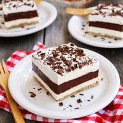 Layered-Chocolate-Pudding-Dessert-with-Salted-Pecan-Crust_AFarmgirlsDabbles_AFD-5