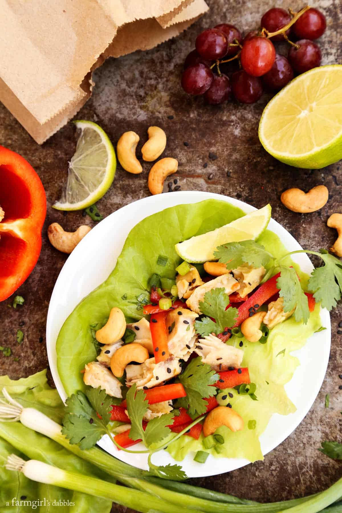 Cashew and Curry Tilapia Lettuce Wraps from afarmgirlsdabbles.com