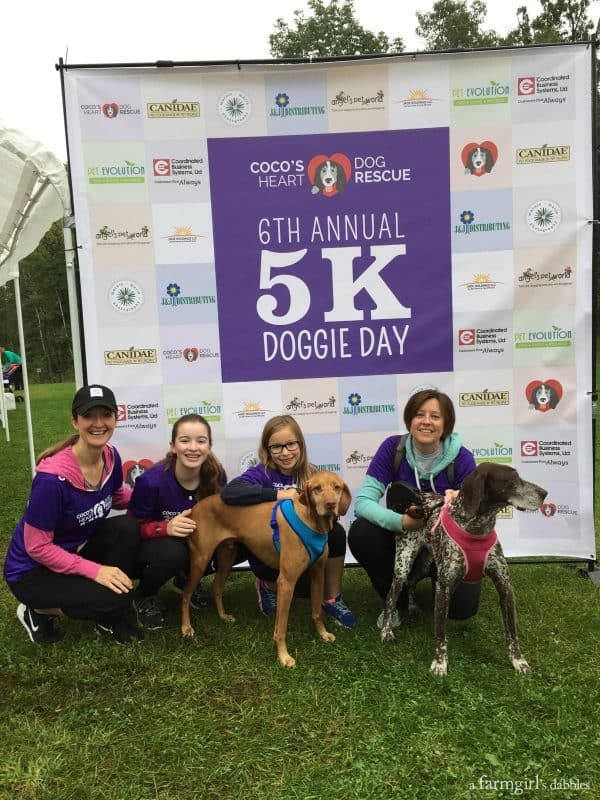 5K Doggie Day from afarmgirlsdabbles.com