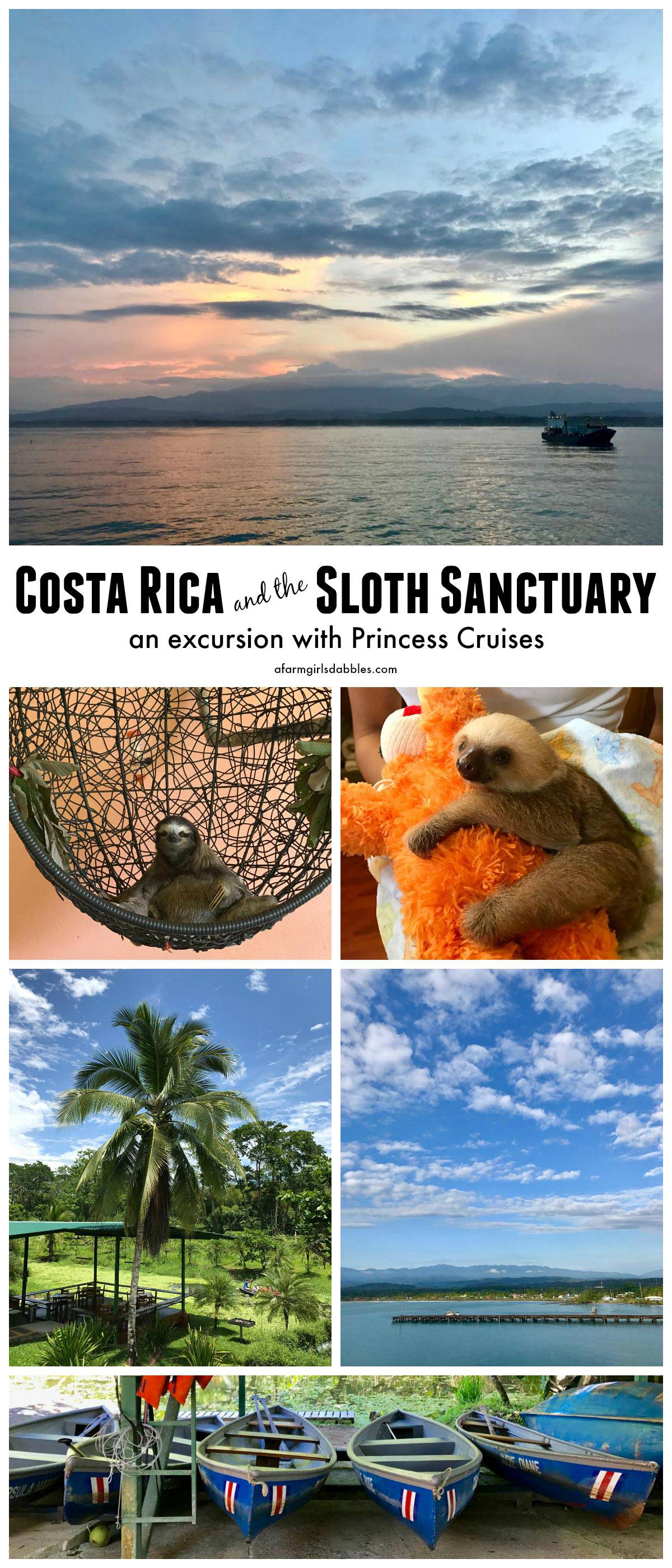 Costa Rica and the Sloth Sanctuary - an excursion with Princess Cruises - from afarmgirlsdabbles.com