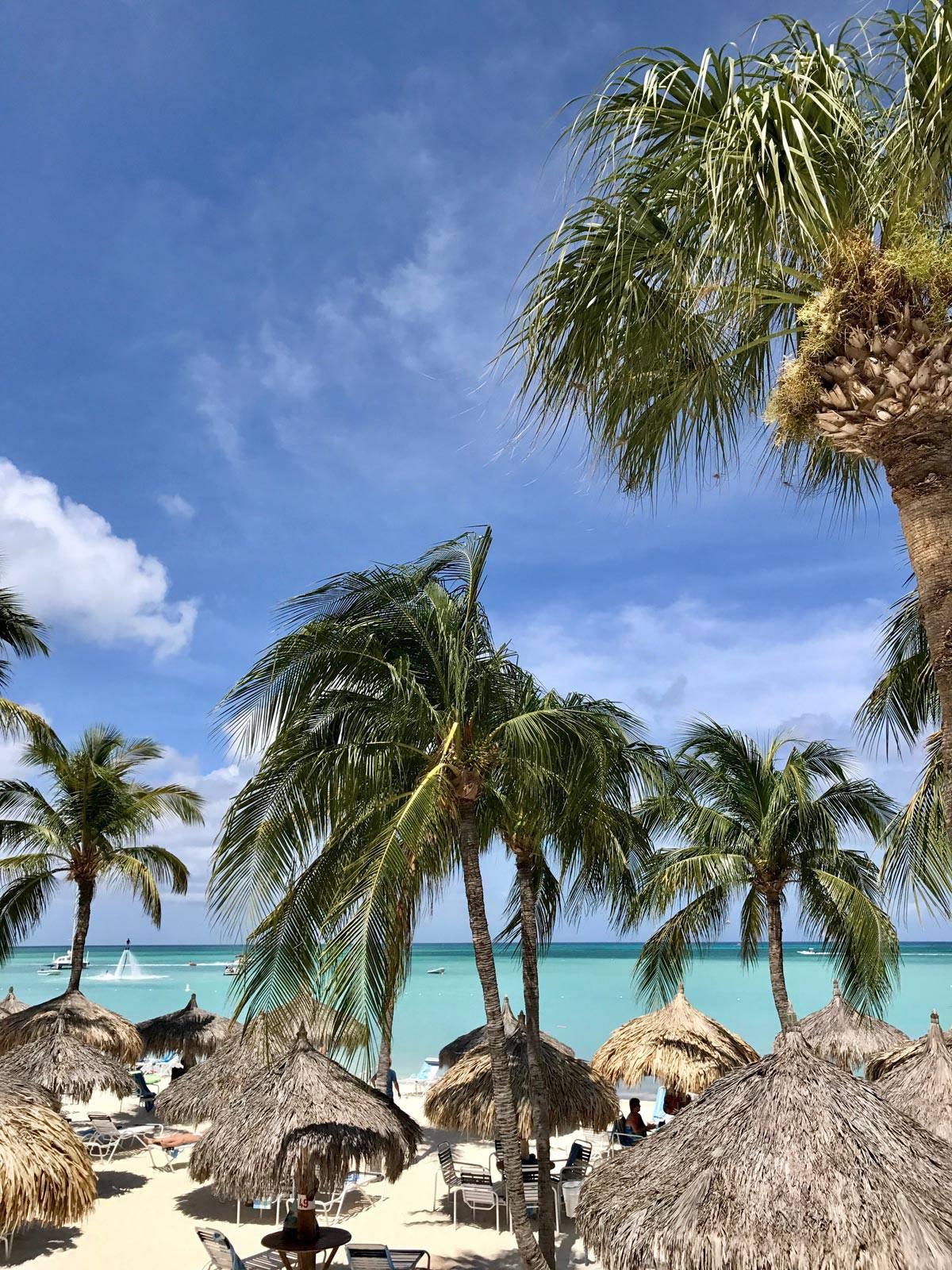 Aruba - Palm Beach - from afarmgirlsdabbles.com