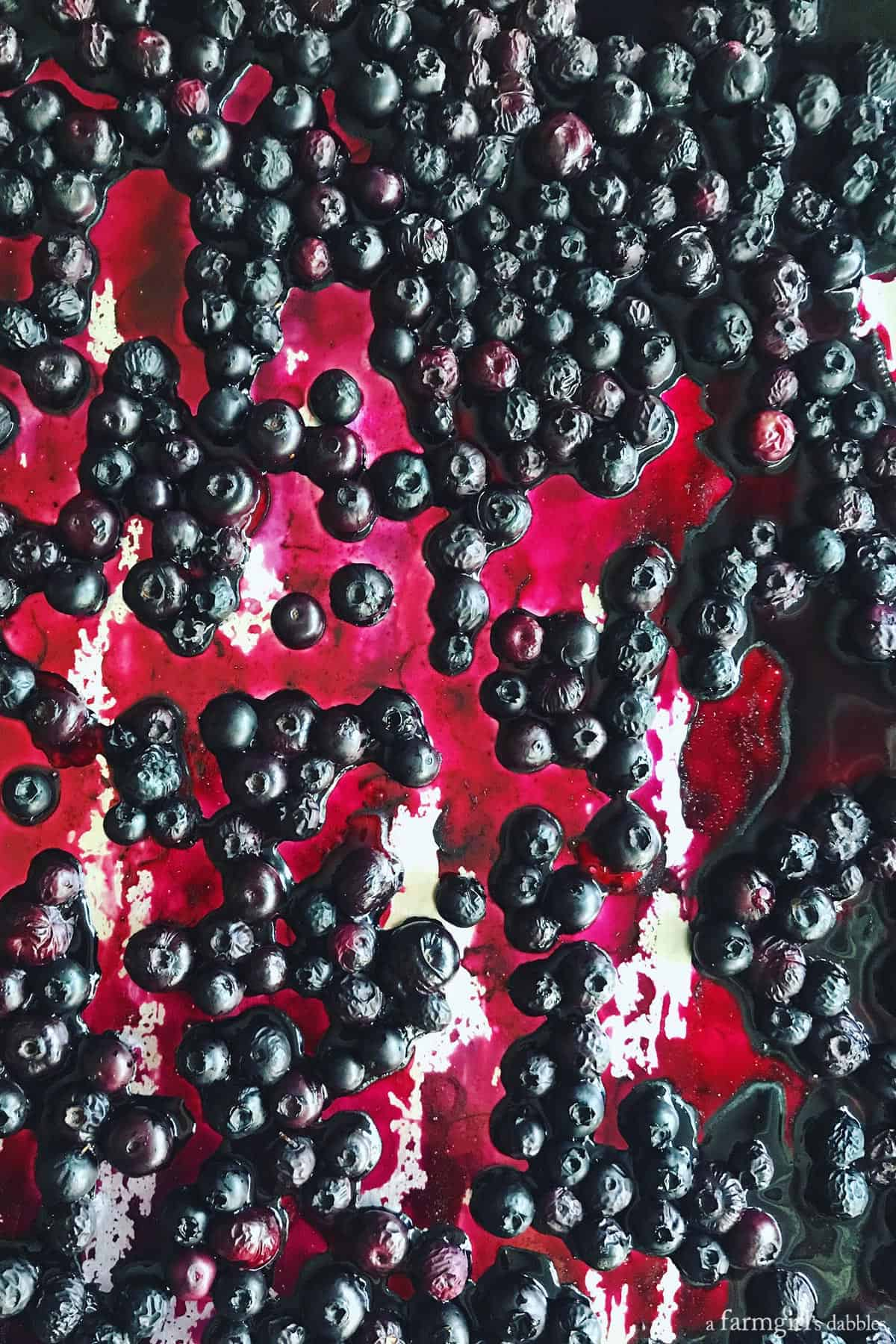 Roasted Blueberry Crème Fraîche Ice Cream from afarmgirlsdabbles.com