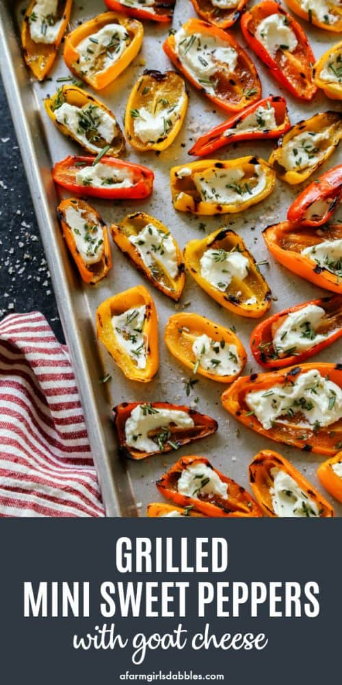 pinterest image of Grilled Mini Sweet Peppers with Goat Cheese