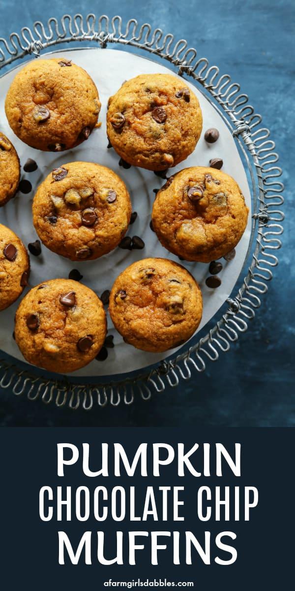 pinterest image of Pumpkin Chocolate Chip Muffins
