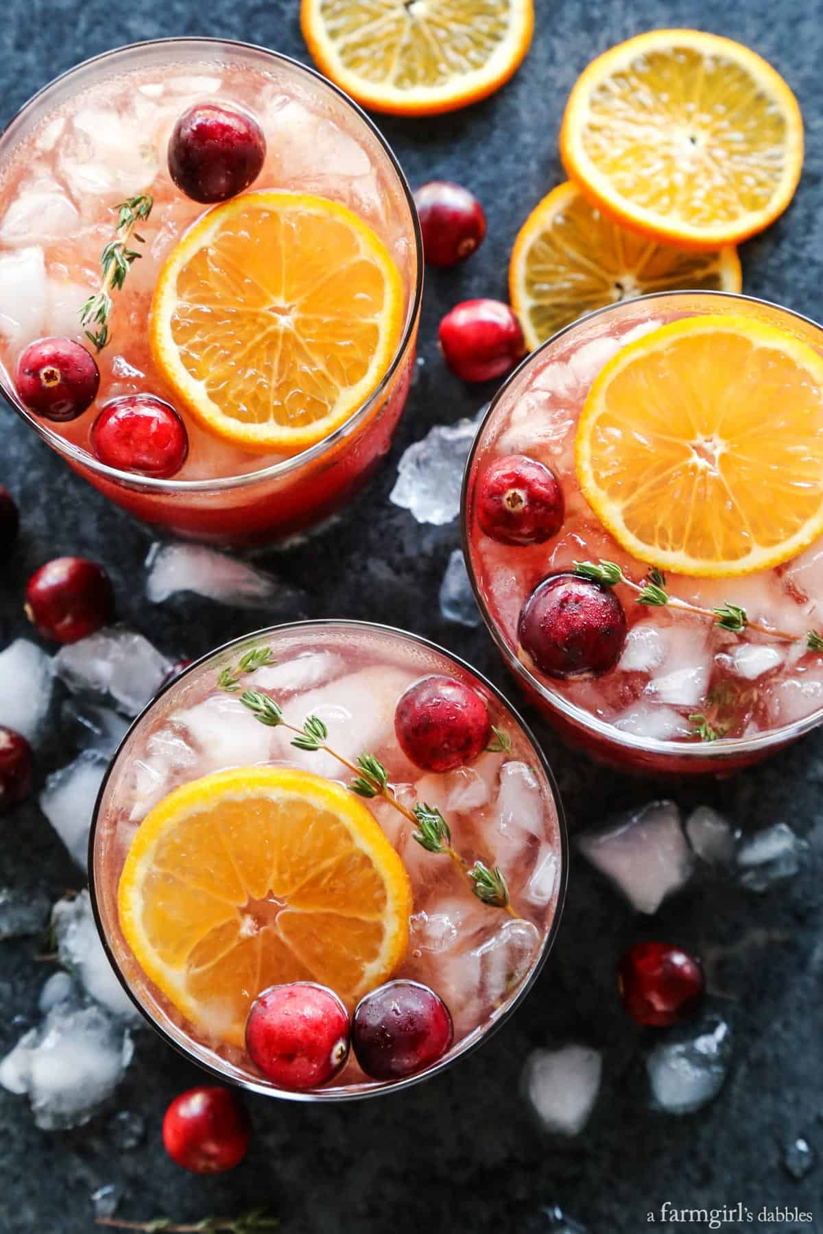 Cranberry Thyme Gin and Tonic from afarmgirlsdabbles.com