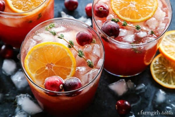 Cranberry Thyme Gin and Tonic with fresh orange slices and cranberries