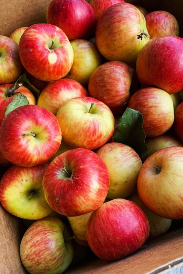 a box of Honeycrisp apples