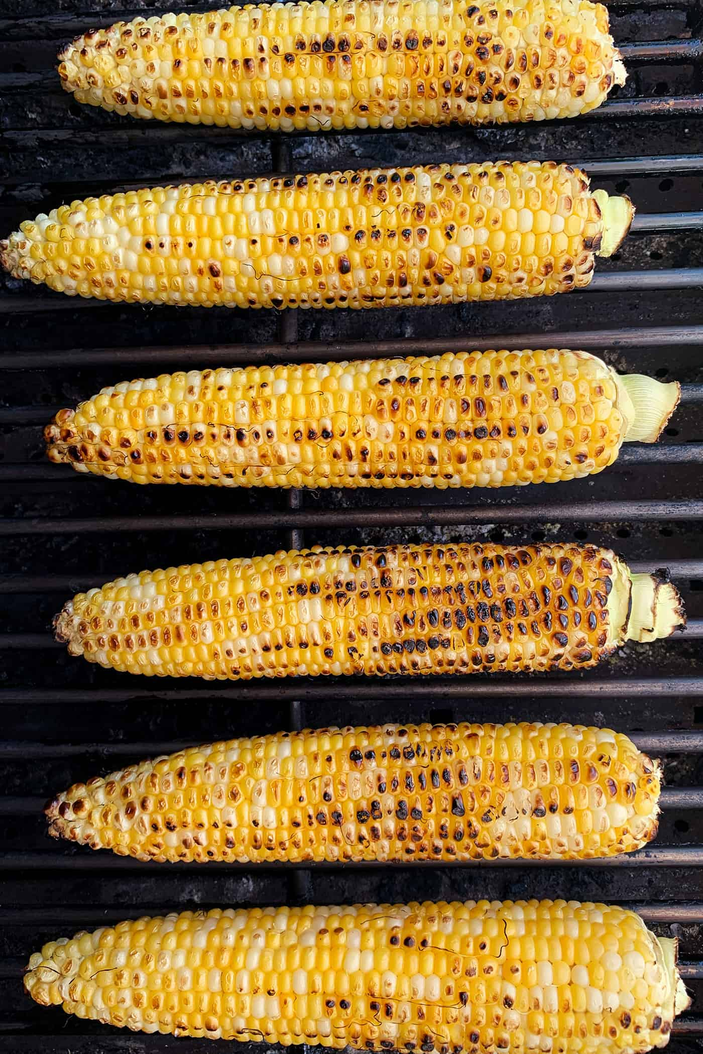 ears of sweet corn on the grill